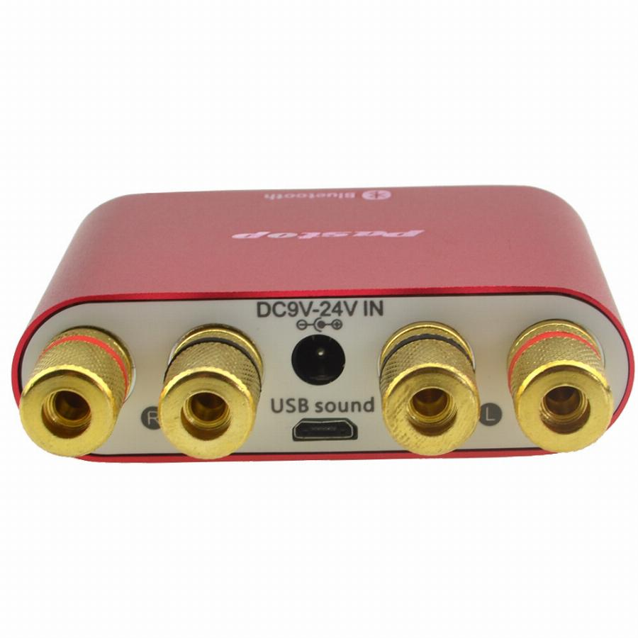 Mini Amplifier 100W